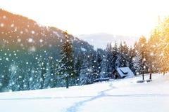 Paisaje hermoso del invierno en las montañas con la nieve que cae Imágenes de archivo libres de regalías
