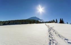 Paisaje hermoso del invierno en las montañas con la trayectoria de la nieve en el st Imagenes de archivo