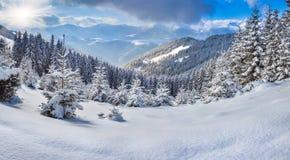 Paisaje hermoso del invierno en las montañas. Foto de archivo