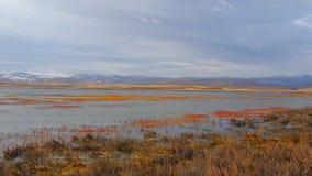Paisaje hermoso del lago con agua pacífica y las plantas coloridas en otoño, con el fondo de la montaña de la nieve y del cielo n almacen de video