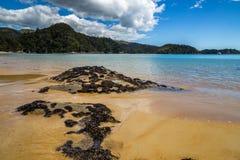 Paisaje hermoso del océano con las rocas cubiertas en las cáscaras de moluscos negros Fotos de archivo