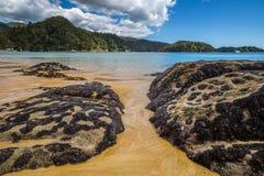 Paisaje hermoso del océano con las rocas cubiertas en las cáscaras de moluscos negros Imagen de archivo