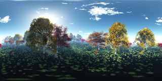 Paisaje hermoso del otoño Árboles del otoño sobre el agua Fotografía de archivo libre de regalías