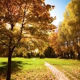 Paisaje hermoso del otoño Imagen de archivo libre de regalías