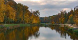 Paisaje hermoso del otoño con niebla sobre el lago Imagen de archivo