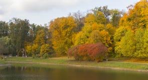Paisaje hermoso del otoño con niebla sobre el lago Imágenes de archivo libres de regalías