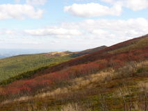 Paisaje hermoso del otoño de la montaña Bieszczady Foto de archivo