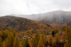 Paisaje hermoso del otoño en el área de Zermatt, suizo Apls imágenes de archivo libres de regalías