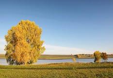 Paisaje hermoso del otoño en el río Imagenes de archivo