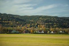 Paisaje hermoso del otoño en Noruega con las hojas amarillas Imagen de archivo