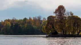 Paisaje hermoso del oto?o del lapso de tiempo en bosque por el lago metrajes