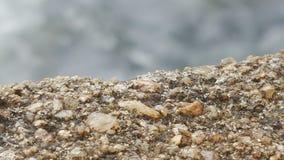 Paisaje hermoso del pico de montaña srilanqués imagen de archivo
