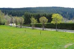 Paisaje hermoso del prado en Alemania fotografía de archivo