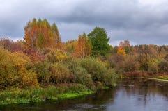 Paisaje hermoso del río del otoño con los árboles coloridos Fotos de archivo libres de regalías