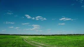 Paisaje hermoso del verano con el campo y las nubes corrientes almacen de metraje de vídeo