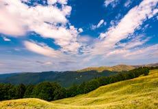 paisaje hermoso del verano de Cárpatos Imagen de archivo libre de regalías