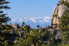 Paisaje hermoso del verano en las montañas Salida del sol Primero plano borroso Fotografía de archivo libre de regalías