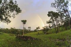 Paisaje hermoso después de la lluvia en estafa nacional de la biodiversidad Imagenes de archivo