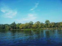 Paisaje hermoso en árbol verde del parque y de la playa con el cielo azul Foto de archivo libre de regalías