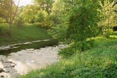 Paisaje hermoso en cambio del agua floreciente en última primavera Fotos de archivo libres de regalías