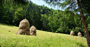 Paisaje hermoso en Casa de Piatra Village, Rumania Imagen de archivo