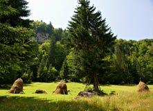 Paisaje hermoso en Casa de Piatra Village, Rumania Imagen de archivo libre de regalías
