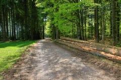 Paisaje hermoso en el bosque negro en Alemania Fotografía de archivo libre de regalías
