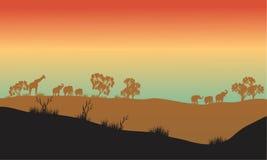 Paisaje hermoso en el parque de África Imagen de archivo