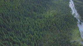 Paisaje hermoso en el parque nacional de Banff, Alberta, Canadá metrajes