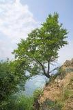 Paisaje hermoso en el soporte Pirchiriano, Italia Fotos de archivo