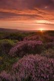 Paisaje hermoso en la puesta del sol Fotografía de archivo
