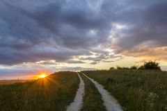 Paisaje hermoso en la puesta del sol o salida del sol, camino de tierra estrecho que estira a través de prado floreciente herboso fotos de archivo libres de regalías