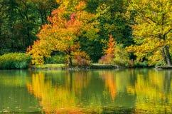 Paisaje hermoso en otoño Foto de archivo libre de regalías