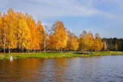 Paisaje hermoso en parque otoñal. Imagenes de archivo