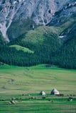 Paisaje hermoso en parque y montaña verde con las ovejas Imágenes de archivo libres de regalías