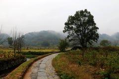 Paisaje hermoso en Wuyuan, Jiangxi fotografía de archivo libre de regalías