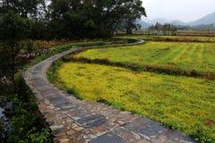 Paisaje hermoso en Wuyuan, Jiangxi imagen de archivo libre de regalías