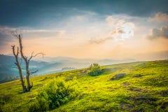 Paisaje hermoso - ooty, la India fotos de archivo