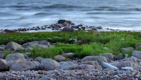 Paisaje hermoso - piedras, hierba y ondas del mar Foto de archivo