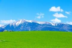 Paisaje hermoso, prado verde y montaña de la nieve Eslovaquia, Europa Central, región Liptov Imagenes de archivo