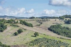 Paisaje hermoso Toscana Foto de archivo libre de regalías