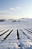 Paisaje hivernal Fotos de archivo libres de regalías