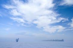 Paisaje hivernal Imagenes de archivo