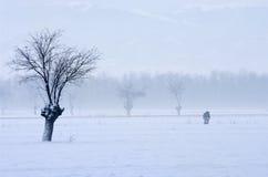 Paisaje hivernal Foto de archivo
