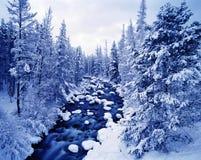 Paisaje hivernal del río Foto de archivo
