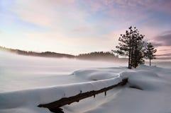 Paisaje hivernal III Foto de archivo libre de regalías
