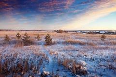 Paisaje hivernal rural foto de archivo libre de regalías