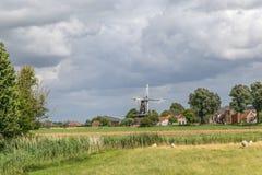 Paisaje holandés con el molino de viento y la multitud de ovejas Imagen de archivo