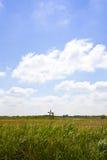 Paisaje holandés con la alta hierba y poco molino Imagenes de archivo