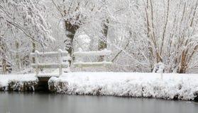 Paisaje holandés de la nieve con el lago y los árboles Fotos de archivo libres de regalías